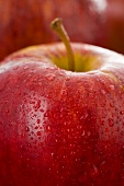Red apple with drops of water (close-up)