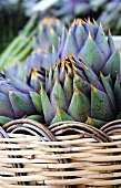 Italian artichokes (with spines) in a basket