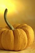 Orange pumpkin with drops of water