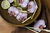 Orchids, lemon grass and lime slices in bowl of water
