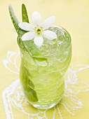 Aloe vera juice with ice cubes
