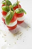 Tomatoes, mozzarella and basil on cocktail sticks