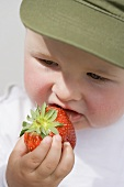 Baby eating a strawberry