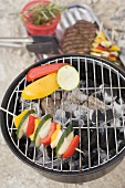 Vegetables on barbecue, meat and kebabs in dish