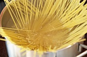 Spaghetti in a pan (close-up)