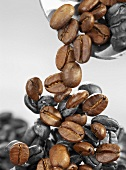 Coffee beans falling from a scoop