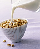 Pouring milk onto honey puffed wheat breakfast cereal