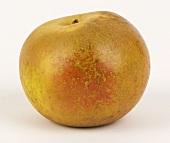 A Russet apple
