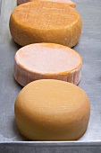 Various round cheeses