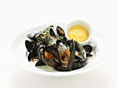 Steamed mussels with white wine sauce and dip