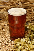 A glass of ale with malted barley and hops