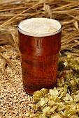 Ein Glas Ale (Bier) mit gemälzter Gerste und Hopfendolden