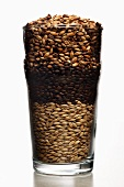 Pint beer glass filled with malted barley (roasted to different degrees)
