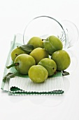 Several fresh greengages in front of upset glass