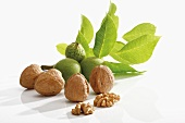 Unshelled and shelled walnuts with leaves
