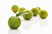 Several greengages, one with leaf