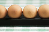 Row of Brown Eggs on Green and White Table Cloth
