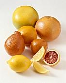 Verschiedene Zitrusfrüchte (Grapefruits, Zitrone, Blutorange, Orangen)
