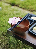 Sushi tray on grass