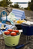 Picnic with vegetables for grilling and marshmallow skewers