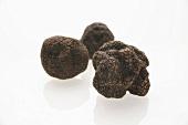 Black truffles (Chinese truffles)