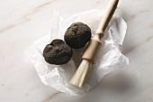 Black truffles (Perigord truffles) with brush on paper
