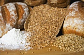 Various types of bread, cereal grains and flour