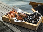 Prawns, crabs and clams in wooden box by sea