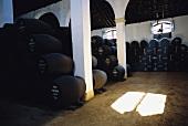 Sherry barrels in wine cellar