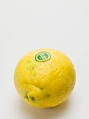 An organic lemon
