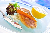 Fried red snapper with carrot on enokitake mushrooms