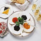Assorted Caviar on Ice with Crackers and Champagne
