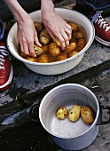 Hands washing potatoes in a bowl