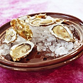 Fresh oysters on plate