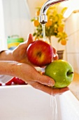 Washing apples over sink