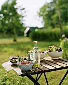 Salad and vegetables on garden table