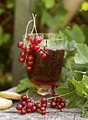 Red currant syrup in a glass
