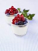 Yoghurt with berries in glasses on checked fabric
