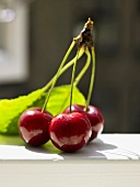Three cherries on one stalk with leaves