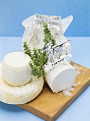 Various goat's cheeses on chopping board