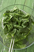 Blanched spinach in strainer