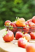 Fresh strawberries in wire basket on wooden table
