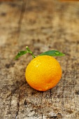Ornamental orange with leaves on wooden background