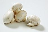 Fresh button mushrooms