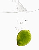 Whole Lime Dropping into Water