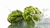 Two artichokes with splashing water