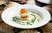 Scallop soup with salmon caviar and rocket