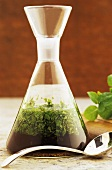 A carafe of mint sauce