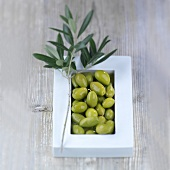 Green olives in a bowl with an olive sprig