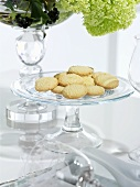 Biscuits on a glass plate